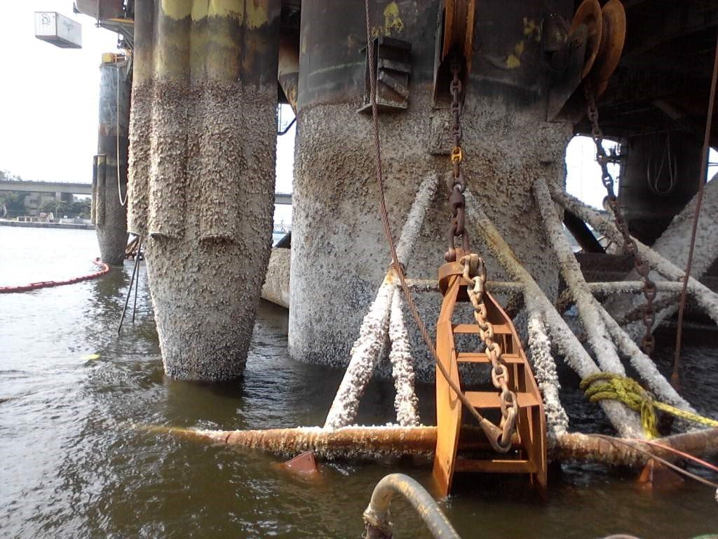 Adherence of marine organisms to maritime structures is known as biofouling, which can be deterred by advanced fluoropolymer coatings.